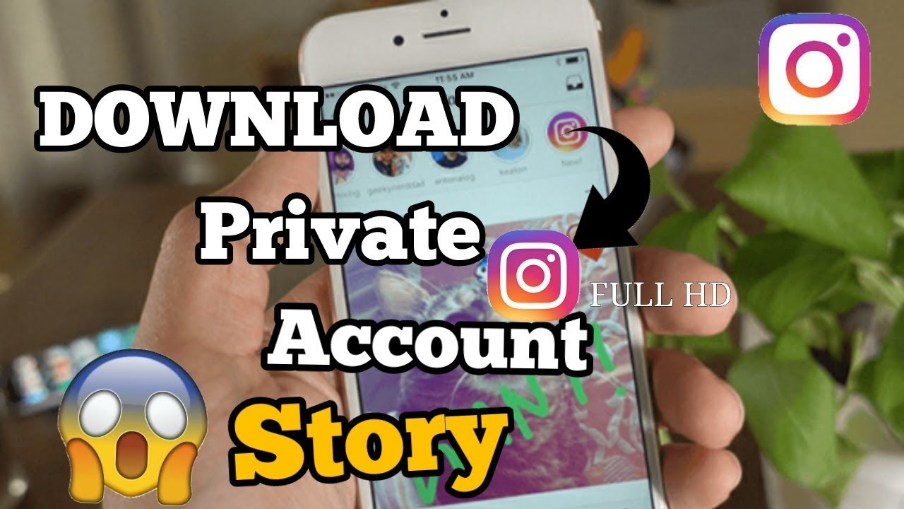 How to Download all Status of instagram Profile without following 2018?