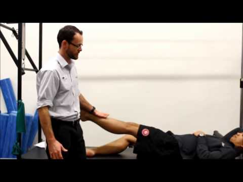Corked muscle advice by my Physio SA for trainers Adelaide Physiotherapist