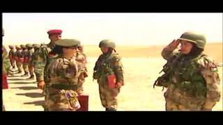 دور المرأة الأردنية في قطاع الأمن