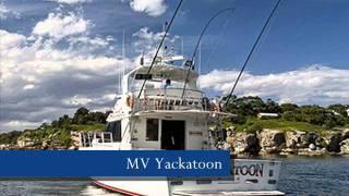 Sydney Charter Yachts.wmv