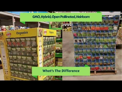 GMO, Hybrid, Open Pollinated, and Heriloom: What's The Difference