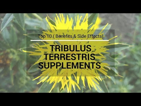 Top 10 TRIBULUS TERRESTRIS SUPPLEMENTS with Benefits and Side Effects