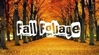 Top 10 places to see in Autumn, Canada. Fall Foliage