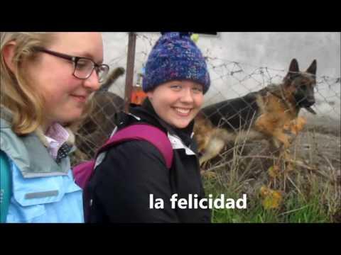 Gracias a Su Ejemplo - Misión Chile Concepción #todalafuerza