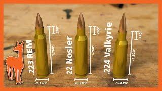 224 Valkyrie Vs 22 Nosler Vs .223 Remington: Wild Speculations!