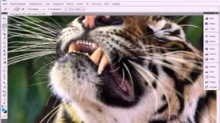 Photoshop урок для начинающих, отбеливание зубов.avi