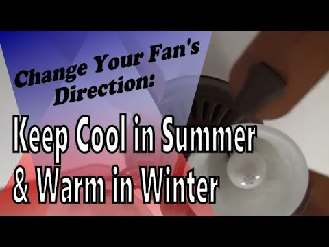 How to Change Your Ceiling Fan's Blade Direction: Keep Cooler in the Summer and Warmer in the Winter