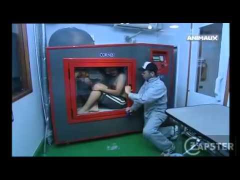 machine a laver pour chien youtube. Black Bedroom Furniture Sets. Home Design Ideas