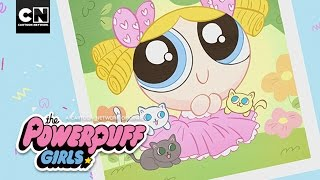 Picture Day | Powerpuff Girls | Cartoon Network