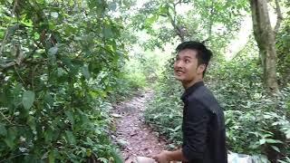 Hành trình khám phá Hang Dơi - Quần tụ anh em Lương Sơn