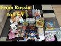 Что я везу из России в США