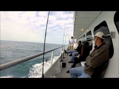 WWP Fishing - Sarasota, FL