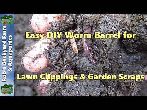 How to make a worm farm.. Easy as worm barrel for lawn clippings & garden scraps..