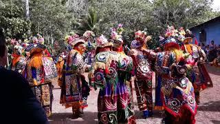 Baile del venado 2,018 Aldea China Cadenas Livingston Izabal Parte 2
