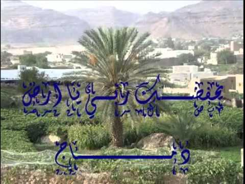 Salafi nasheed damaj in Yemen