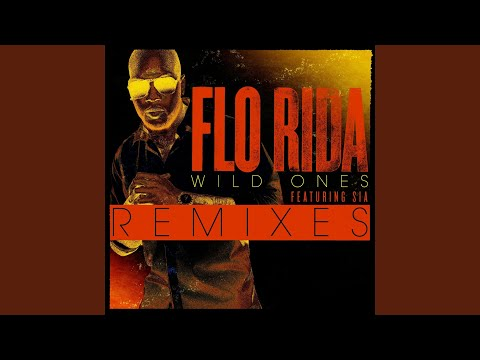 Wild Ones (feat. Sia) (Project 46 Remix)
