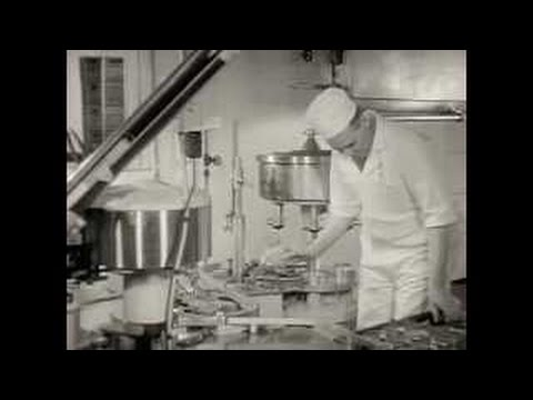 Jersey Farms Dairy Operations - 1940s Educational Documentary - Ella73TV
