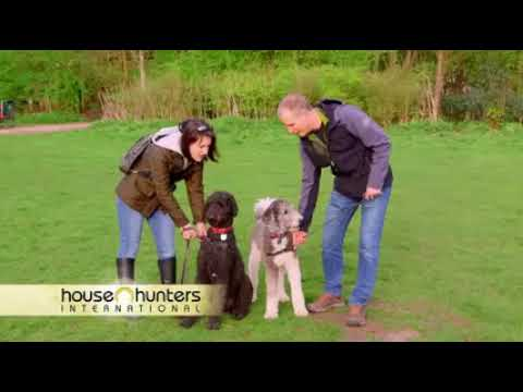House Hunters International – A Doggie Dilemma In Amsterdam