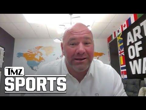 Dana White Wants Floyd Mayweather to Retire, Undecided on Logan Paul in UFC   TMZ Sports