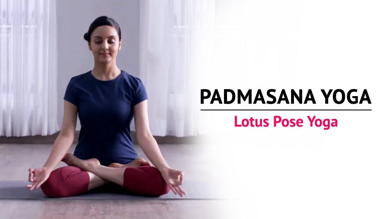 Top 10 Sitting Yoga Poses Seated Yoga Asanas The Art Of Living Global