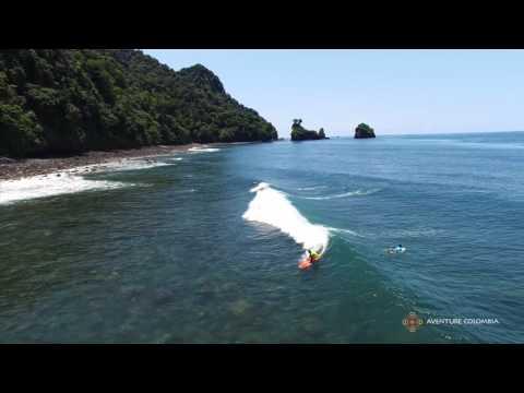 Surf con ballenas Jorobada Nuqui Cabo Corrientes - Choco Costa Pacifica Colombia