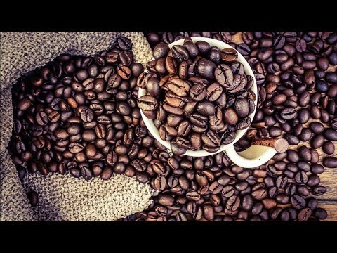 Coffee - World's Top Demand Drink - Top Documentary Films