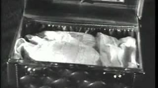 Lady Dada's Nightmare (Music Video) - MGMT