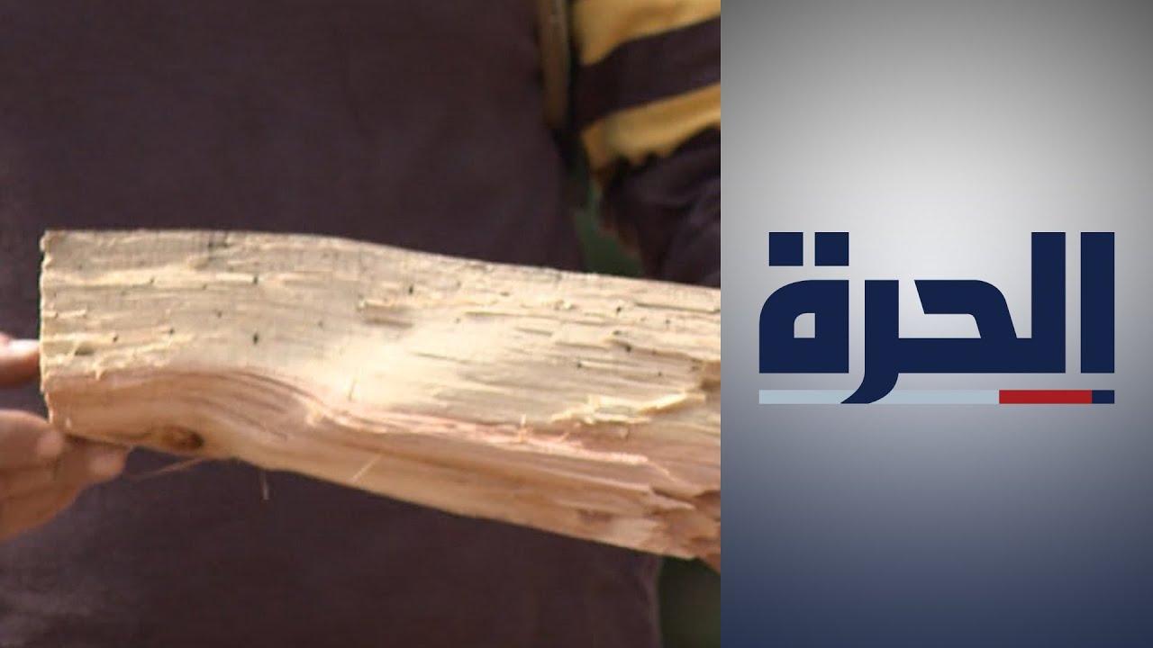 لبنان.. الأزمة الاقتصادية تدفع كثيرين لتعويض المازوت بالحطب  - 17:54-2021 / 10 / 20