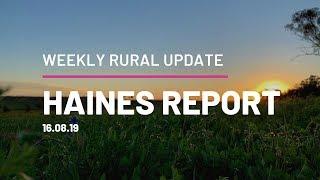 Haines Report 16.08.19 QPL Rural Property & Livestock