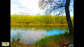 Малые реки России Терешка Вольский район Саратовская область Май 2017 года