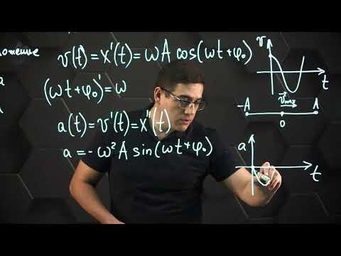 Уравнения и графики механических гармонических колебаний. 11 класс.