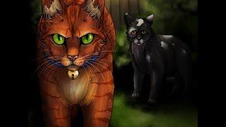 Warriors Cats(Коты- Воители) Интересные арты на эту тему