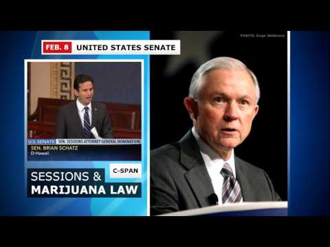 Sen. Schatz Blasts Sessions Over Marijuana (Feb. 8, 2017)