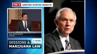 Sen. Schatz Blasts Sessions Over Marijuana (Feb. 8, 2017)