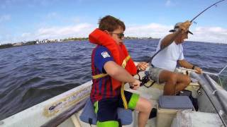 Fishing Lemon Bay, Florida and Manatee Sighting with Calf 2014