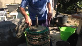 hacer aceite de oliva casero prensado en frio