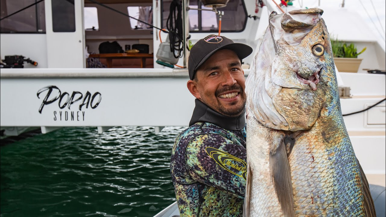 Spearfishing Mulloway from our Sailboat Catamaran, does it get any better? (Sailing Popao) Ep.27