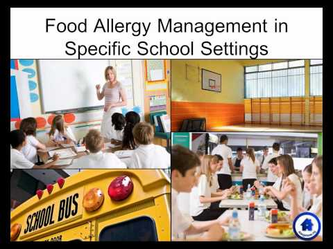 Food Allergy in School: What Parents Need to Know