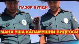 ШОВ - ШУВ БУЛГАН ЙПХ ГАИ ВИДЕОСИ - ЧИКДИ! #10