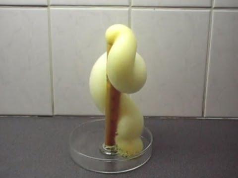 Chemistry experiment 10 - Elephant's toothpaste