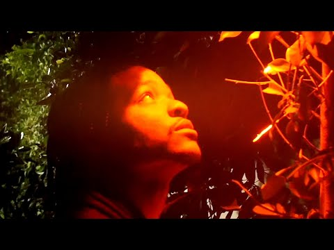 Supa Bwe - I Hate You (Official Video) (Dir. LONEWOLF)