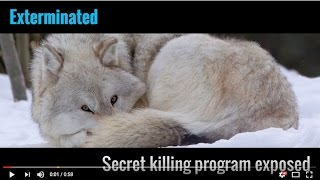 Exterminated: Secret killing program exposed