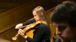 PIANO TRIO IMPRESSION | Josef Suk: trio opus 2 in c minor (Allegro assai)