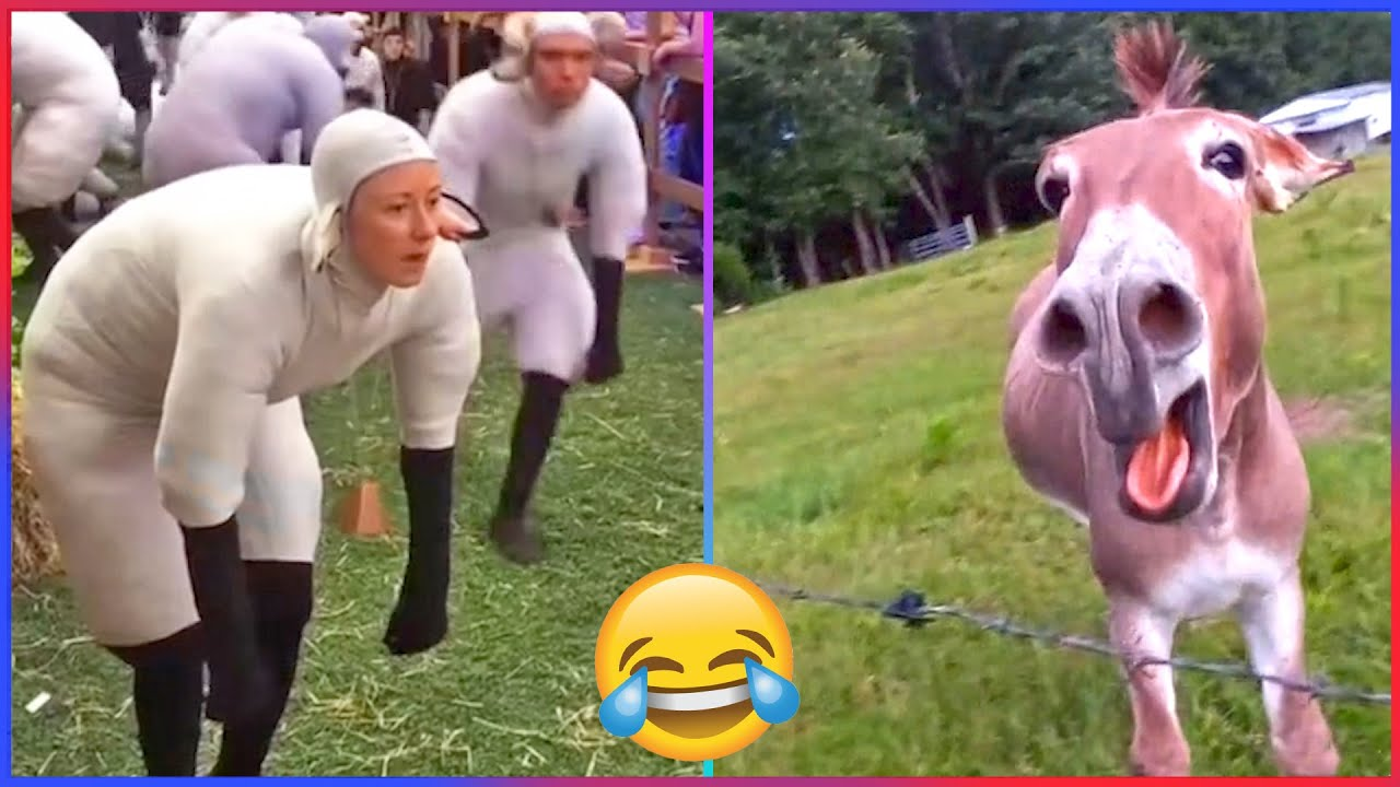 TikTok Try Not To Laugh Challenge (Impossible🥵)   Part 19