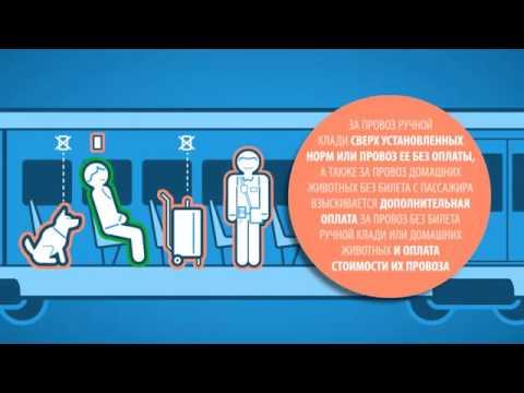 Правила проезда и провоза багажа в пригородных электричках