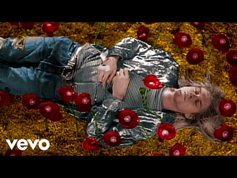 Nirvana - Heart-Shaped Box (Director's Cut)