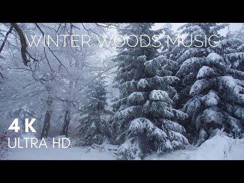 Winter Relaxing Blizzard & Howling Music   4K   Relaxing Music Station