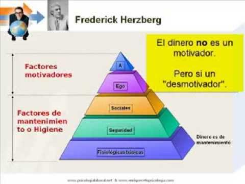 Estrategias De Motivación Para El Desempeño Y Productividad
