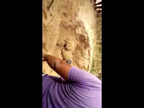 Bihar Murder of Contractor in Nawada