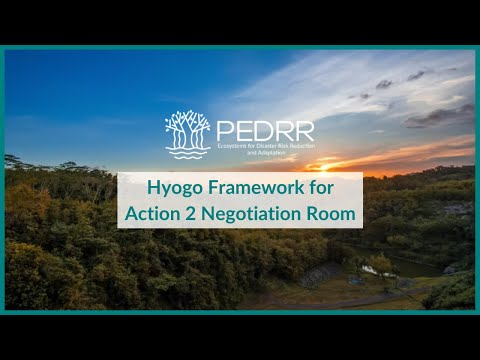 From the Hyogo Framework for Action 2 Negotiation Room